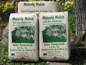 mainely mulch salt hay substitute